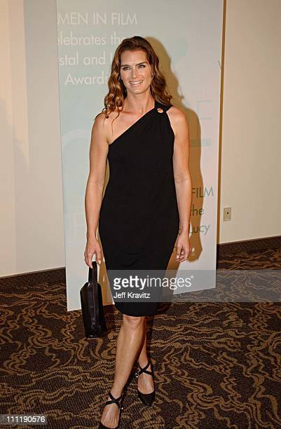 Brooke Shields during 2002 Women in Film Crystal Lucy Awards at Century Plaza Hotel in Los Angeles California United States