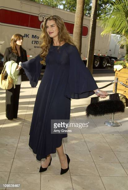 Brooke Shields during Barneys New York and Malo Cashmere Honor Hollywood Producer Robert Evans for His New Film 'The Kid Stays In The Picture' at...