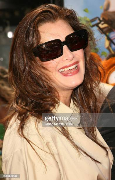 Brooke Shields during Dreamworks' Over The Hedge Los Angeles Premiere Arrivals at Mann Village Theatre in Westwood California United States