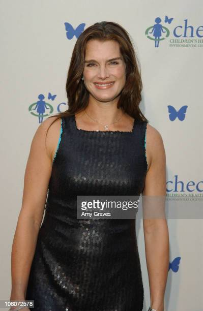 Brooke Shields during Ford Escape Hybrid at CHEC's Healthy Earth Healthy Child at Private Residence in Pacific Palisades California United States