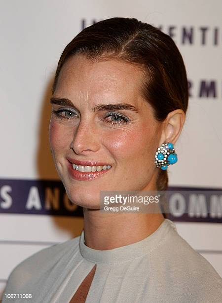 Brooke Shields during LA Commission on Assaults Against Women Hosts its 31st Annual Humanitarian Awards at Fairmont Miramar Hotel in Santa Monica...