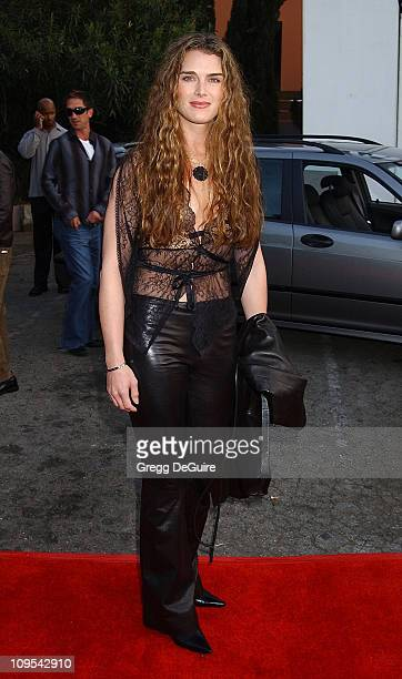 Brooke Shields during Los Angeles Fashion Week Lotta Fall 2002 Collection to Benefit 'Dress for Success' at Moomba in West Hollywood California...