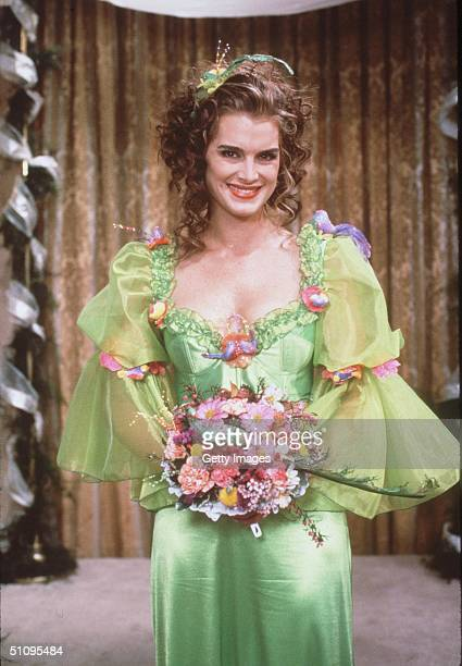 Brooke Shields In Her Show 'Suddenly Susan'