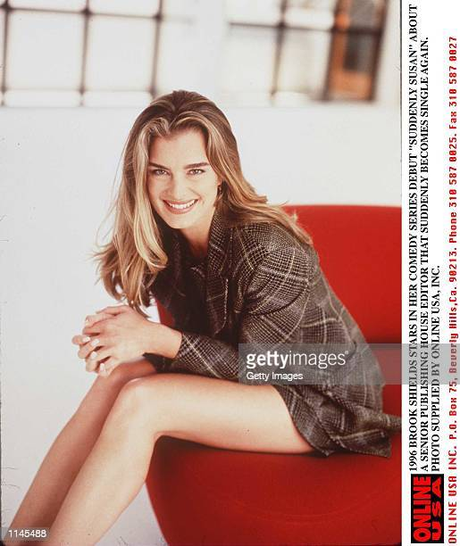 Brooke Shields stars in her comedy series debut 'Suddenly Susan' The series is about a senior editor in a publishing house that is suddenly single