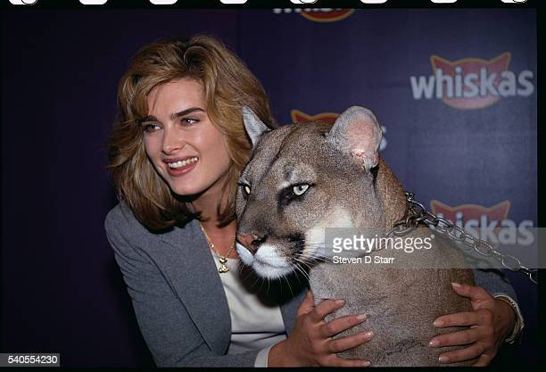 Brooke Shields with Mountain Lion at Whiskas Event