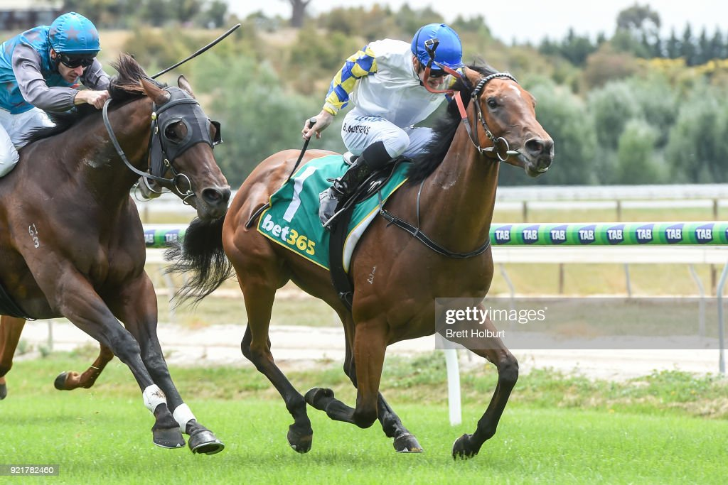 Brooklands ridden by Beau Mertens wins the bet365 Maiden Plate at Kyneton Racecourse on February 21, 2018 in Kyneton, Australia.