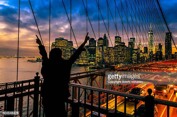 brooklyn bridge sightseeing - idiots stock pictures, royalty-free photos & images