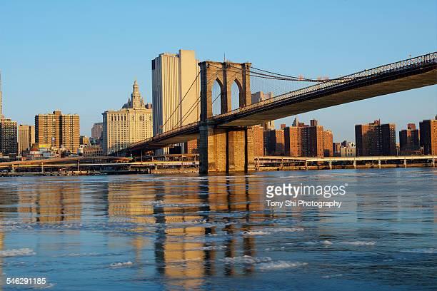 Brooklyn Bridge with icy reflection