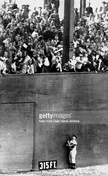 Brooklyn Dodgers' left fielder Andy Pafko, back as far as he can go, appears to be pushing wall in effort to collar game winning 3-run homer in the...