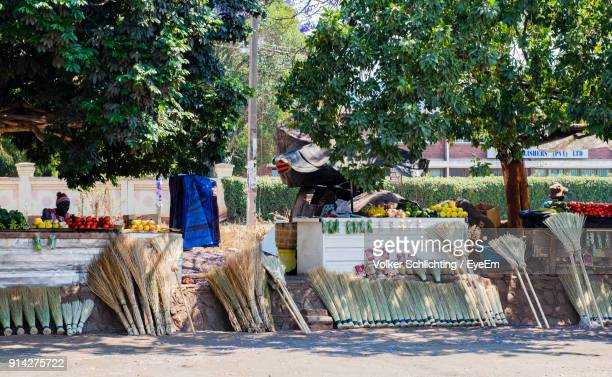 brooms by trees on street - zimbabwe stock pictures, royalty-free photos & images