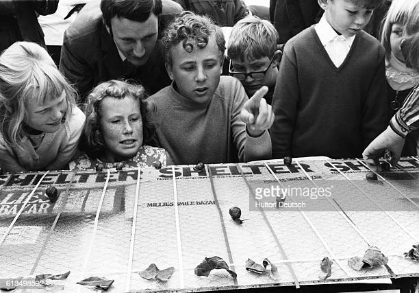 Brother and sister Christopher and Amanda Hudson watch as their snail forges into the lead during a race held on the Brighton seafront in aid of...