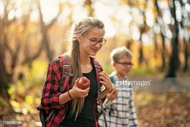 brother and sister enjoying autumn in forest - sister stock pictures, royalty-free photos & images