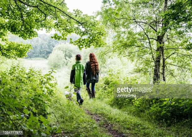 brother and sister enjoying hike with dog through forest - springtime stock pictures, royalty-free photos & images