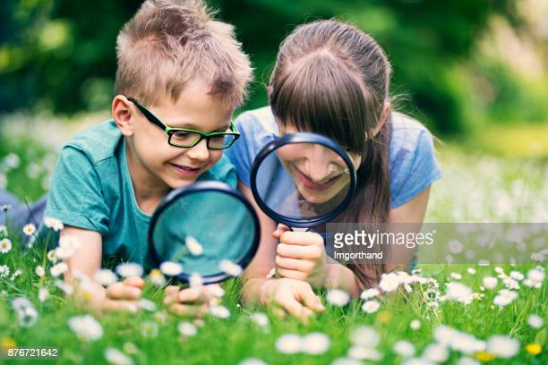 Brother and sister having fun observing grass