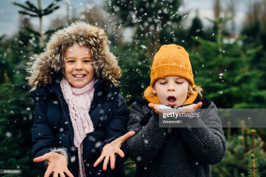 Brother and sister having fun with snow before Christmas : Stock Photo