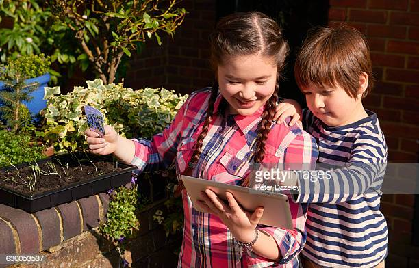 Brother and sister in garden with digital tablet