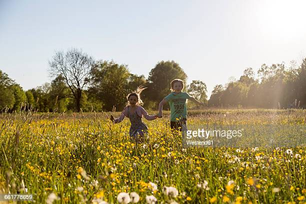 Brother and sister running on field of flowers at springtime