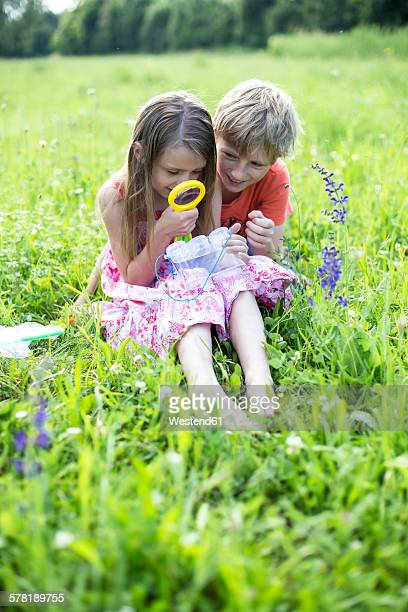 Brother and sister sitting on a meadow with insect can and magnifying glass