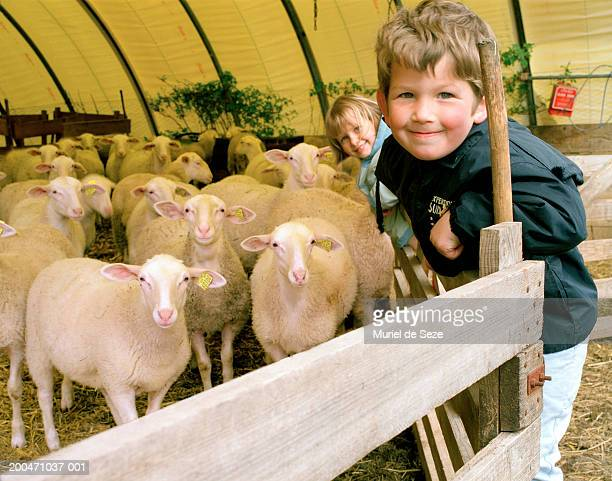 Brother and sister (4-6) standing on fence around sheep pen, smiling