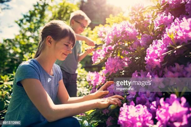 Hermano y hermana tiende a flores en el jardín