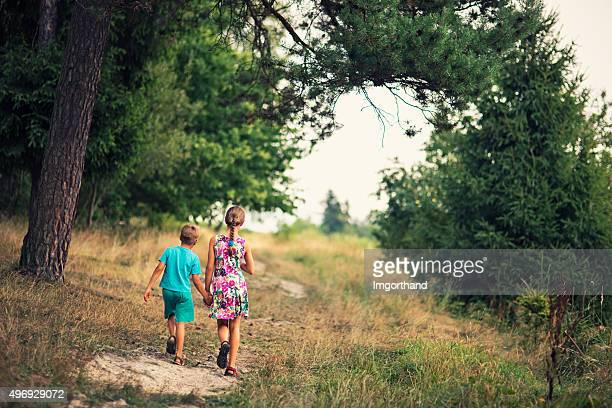brother and sister walking in nature - lane sisters stock photos and pictures