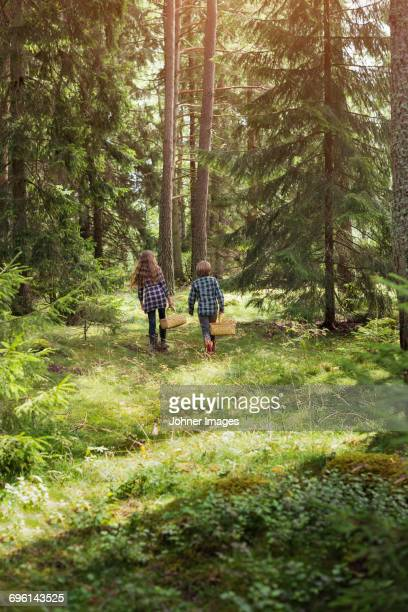 Brother and sister walking with baskets in forest