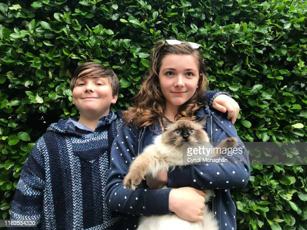 brother and sister with their pet ragdoll cat - ragdoll cat stock pictures, royalty-free photos & images