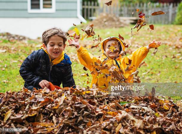 brother & sister play in leaves - girl mound stock pictures, royalty-free photos & images