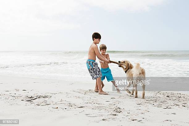 Brothers and dog by the sea