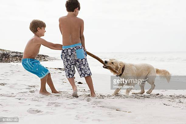 Brothers and dog on a beach