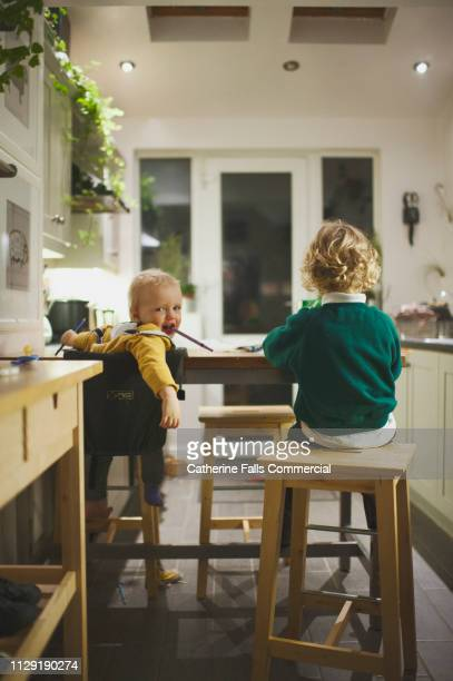 brothers at kitchen table - home schooling stock pictures, royalty-free photos & images