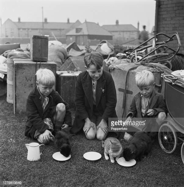 Brothers Charlie, Ben and Harry Ferguson of West Ham give their pet cats a drink of milk after arriving in Blackpool, Lancashire, following their...