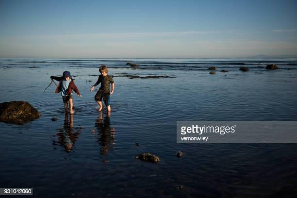 hermanos arrojando algas marinas el uno al otro al atardecer - marisma fotografías e imágenes de stock