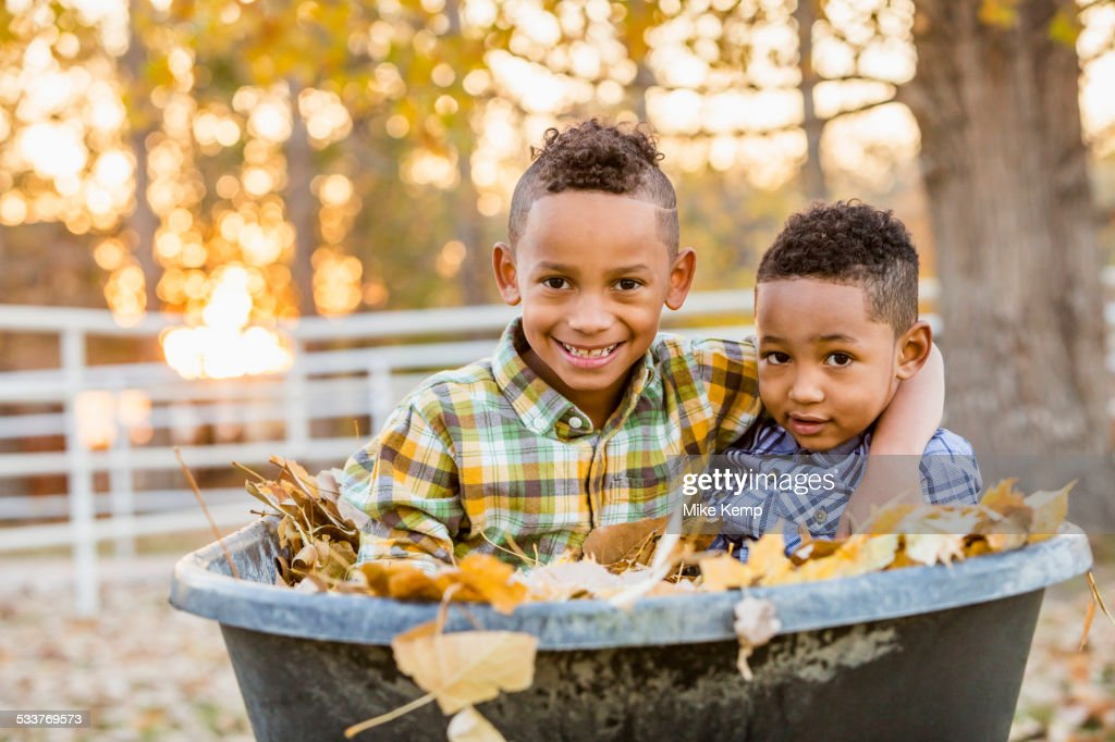 Brothers hugging in autumn leaves in wheelbarrow : Foto stock