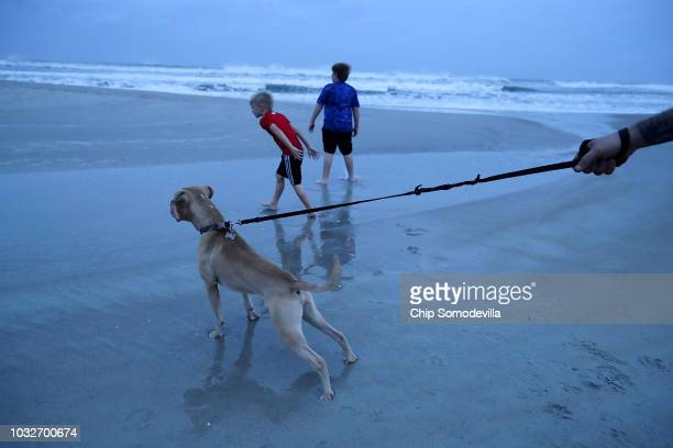 Brothers Oliver Schoden and Tyler Schoden play on the beach with neighbor Ty Mann's dog Zane before a 10 am curfew ahead of Hurricane Florence on...