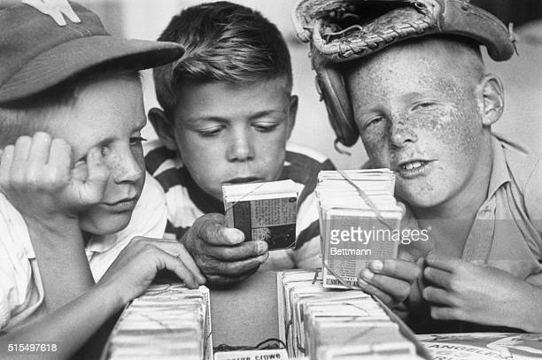 Brothers Paul and Mike Arms admire their prize baseball card collection with fellow card collector Robert Trupathy