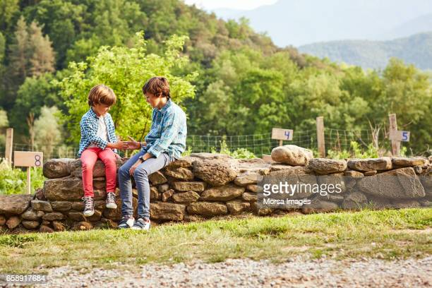 brothers playing while sitting on stone wall - stone wall stock pictures, royalty-free photos & images