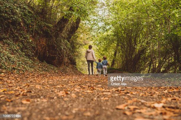 brothers running in the forest - woodland stock pictures, royalty-free photos & images