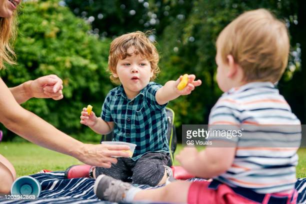 brothers sharing food in park - picnic stock pictures, royalty-free photos & images