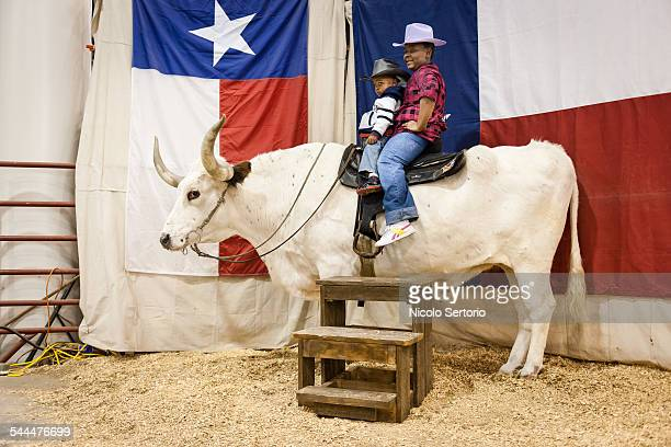 Brothers taking photo on on bull with Texas flag