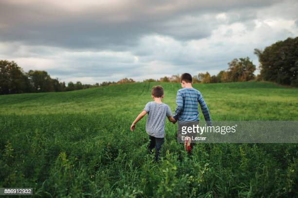 brothers walking on green grassy field - family with two children stock photos and pictures