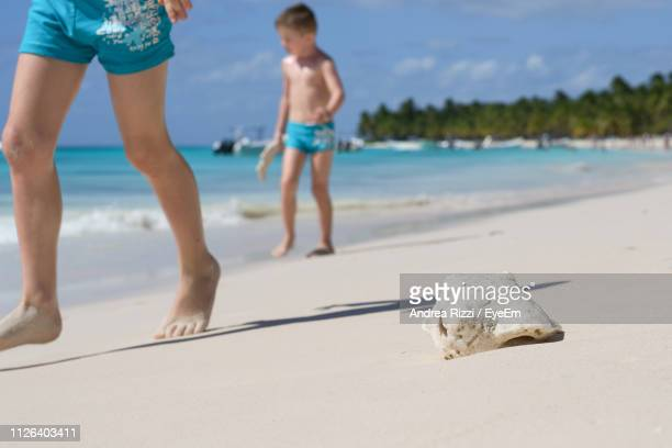 brothers walking on sand at beach against blue sky during sunny day - andrea rizzi stockfoto's en -beelden