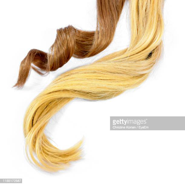 brown and blond hair over white background - brown hair photos et images de collection