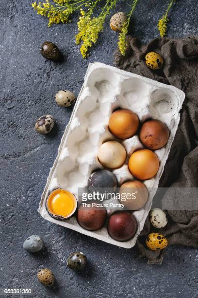 Brown and gray colored chicken Easter egg