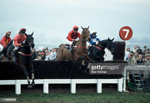 Brown Chamberlin ridden by John Francome ahead of Fifty Dollars More ridden by Richard Linley and Observe ridden by Ben de Haan during the Gold Cup...