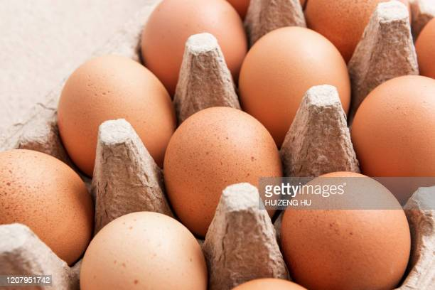 brown eggs in an egg box, close-up - oeuf photos et images de collection