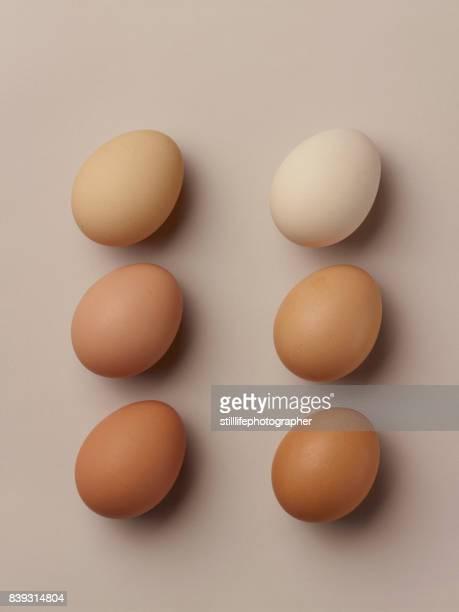 6 brown eggs laying static on beige surface - ei bruin stockfoto's en -beelden