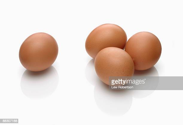 brown eggs on white - animal egg stock pictures, royalty-free photos & images