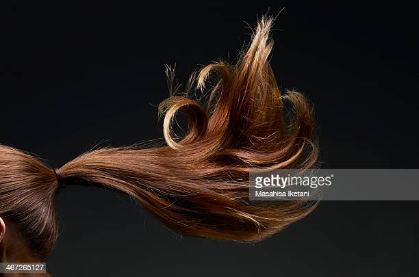 brown hair fluttering - ponytail stock pictures, royalty-free photos & images