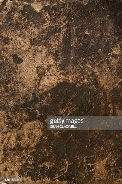 brown leather background - mottled skin stock pictures, royalty-free photos & images